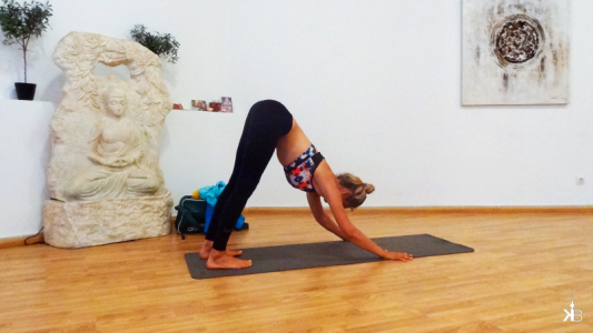 learning the difference between hatha and ashtanga yoga from Anna | kleppiberlin.de